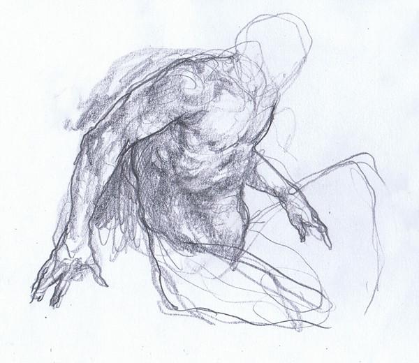 anatomia è un opinione.jpg