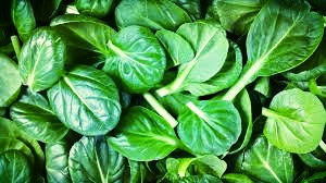 fresh baby spinach for pulled pork rolls