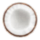 coconut isolated.png