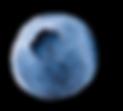 CIC Blauwe bes 02 OL.png