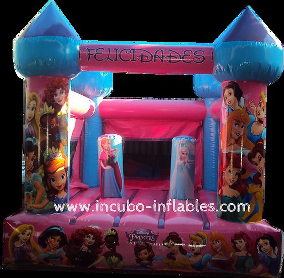 Castillo impreso princess