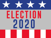 2020 Election Madness 🇺🇸