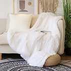 #1 Faux Fur Blanket