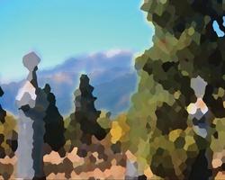 Mountain Monarchs