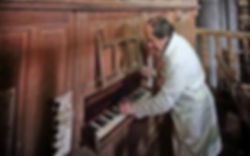 organo Novales.jpg