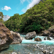 Landscape Newzealand