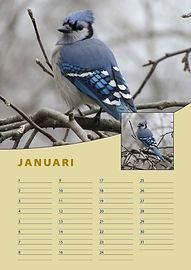 A4-verjaardag-kalender-januari.jpg