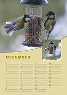A4-verjaardag-kalender-staand-december.j
