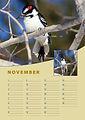 A4-verjaardag-kalender-staand-november.j