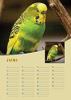 A4-verjaardag-kalender-staand-juni.jpg