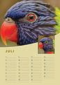 A4-verjaardag-kalender-staand-juli.jpg