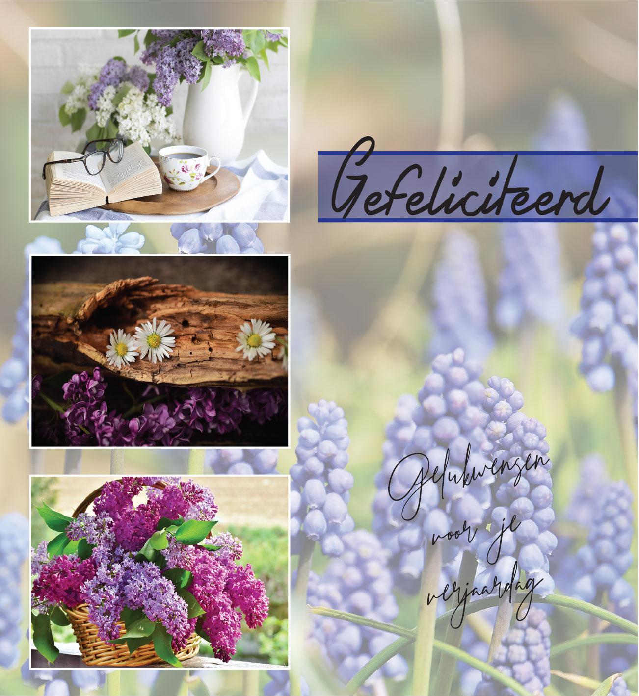 Flora concept