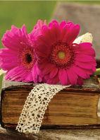 Bloemenkaartjes-Blanco-Gerbera's-op-boek