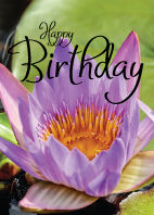 Bloem-Happy-Birtday-Lotus-paars.jpg