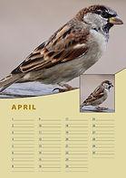 A4-verjaardag-kalender-staand-april.jpg
