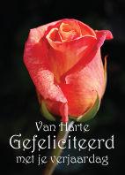 Bloemenkaartjes-Gefeliciteerd-roos-zwart