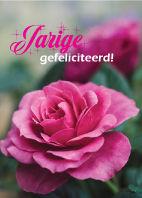 Bloemenkaartjes-Jarige-Gefeliciteerd.jpg