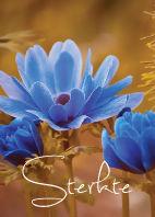 Bloemenkaartjes-Sterkte-blauwe-bloem.jpg