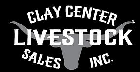 CCLS Logo.png
