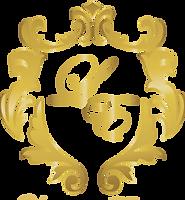 liquid elite logo w_o final_edited.png