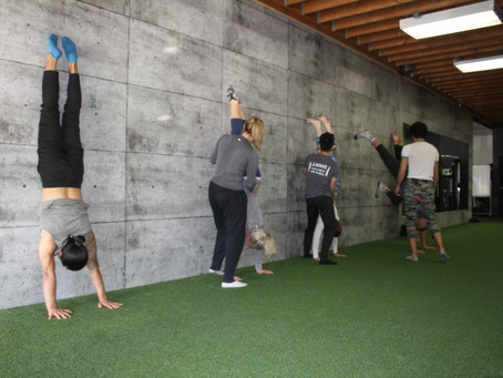 Calisthenics - A Systematic Approach to Develop Strength