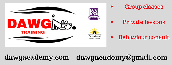DAWG Pet Care and Training Academy (2).p