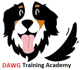 DAWG Training Academy.png