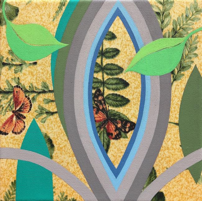 Megan Frances Les Papillons