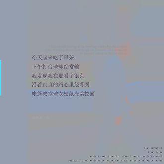 YAN_SY122418-1(海鸥拉面).jpg