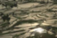 טרסות האורז של יואניאנג
