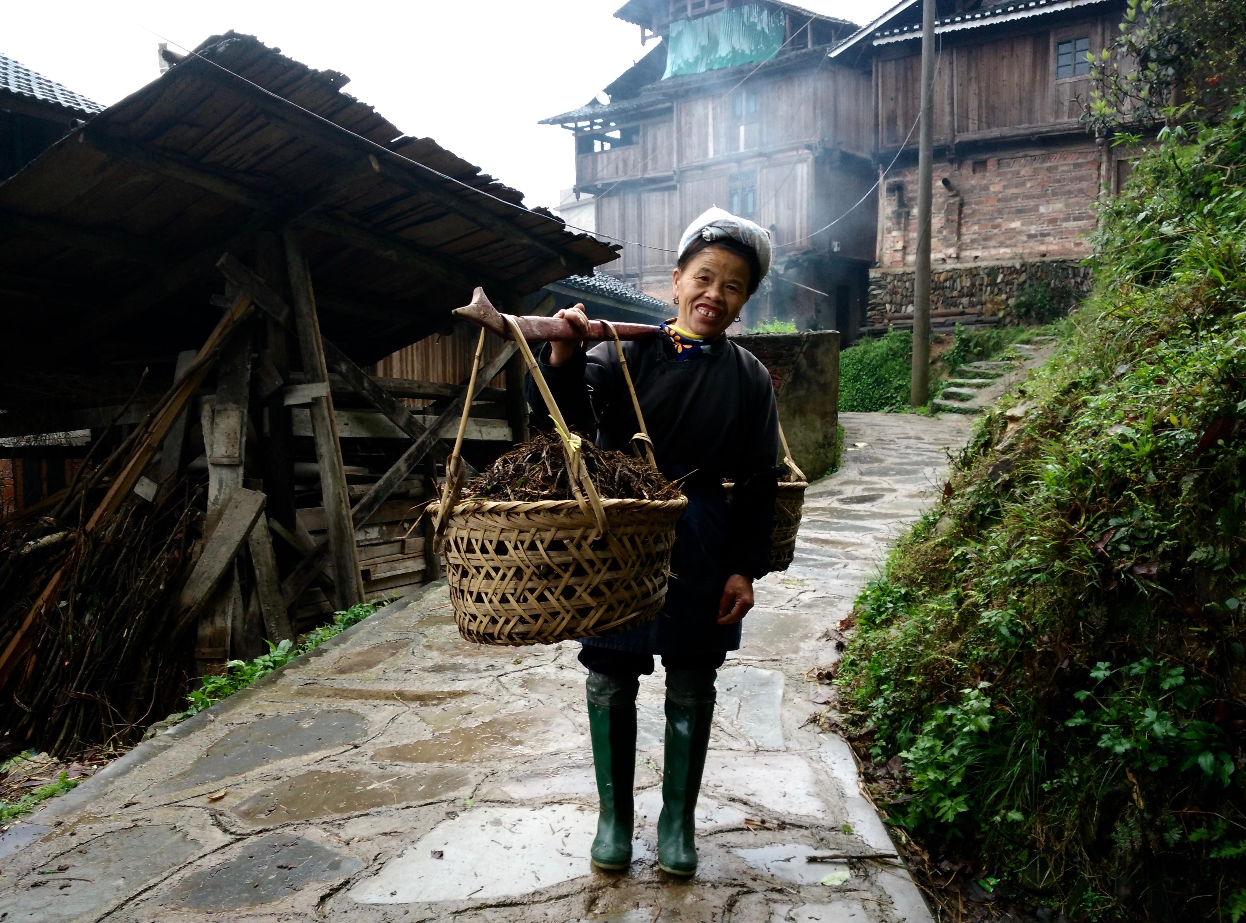 גוויז'ואו טאנג אן