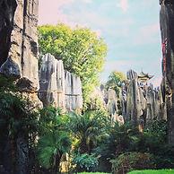 יער האבן, יונאן