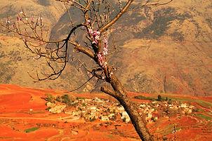 אזור האדמה האדומה - חבל יונאן