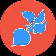 logo_raddish_favicon_v2.png
