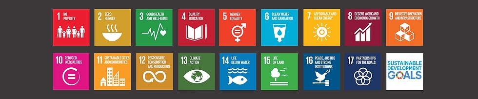 SDGs_2030 Agenda black background.png