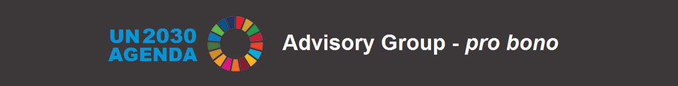 UN 2030 Agenda_pro_bono_Advisory_Group.p