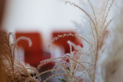 Wishbone©Fabrik23-174.jpg