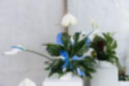 WishboneXkw9-9.jpg