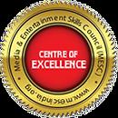 Media and Entertainment skill council Logo