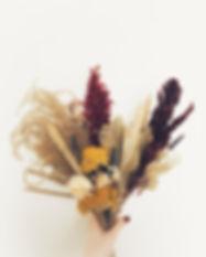 Snapseed (72).jpg