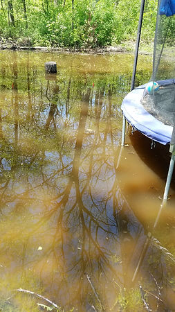 Flooded Backyard of Resident in District