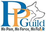 PPG-w-No-Pain-No-Force-No-Fear-combined-