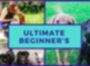 ultimate beginner's.jpg