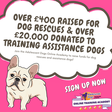Over £200 raised for phoenix rehoming! (3).png