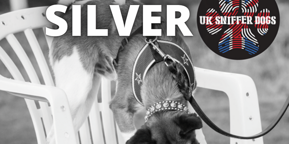 UK SNIFFER DOGS SILVER