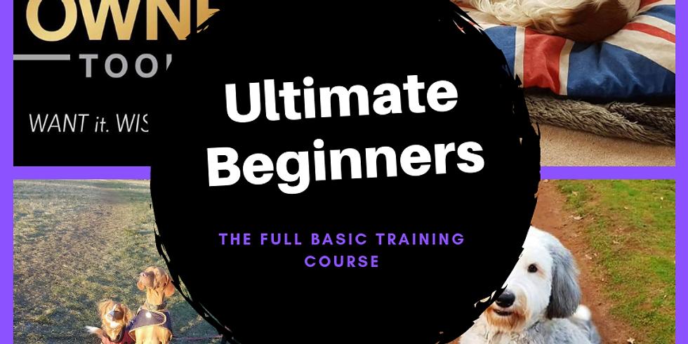 Ultimate Beginners Online £129
