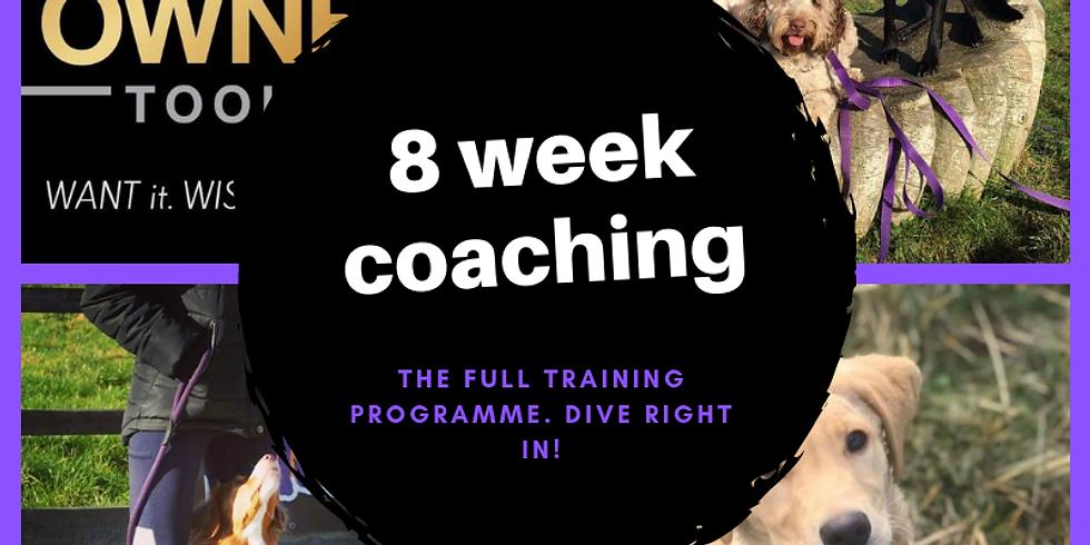 8 week online coaching course £400