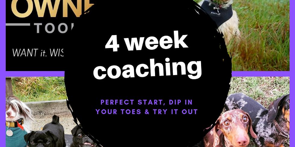 4 week online coaching course £200