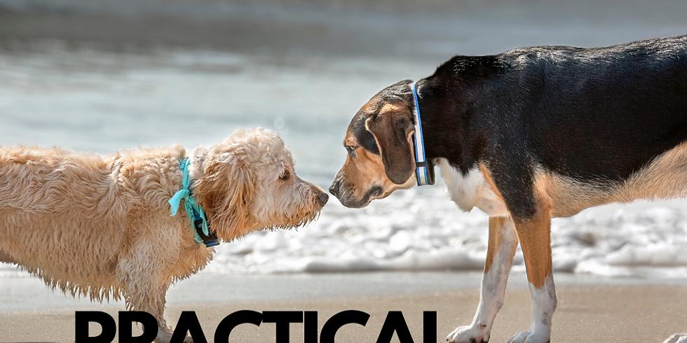 Practical Social Skills (1)