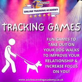 www.adolescentdogacademy.co.uk (1).png